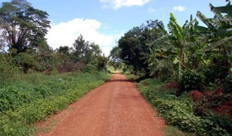 Image for Buvuma island uganda