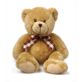 Teddy Bear Lovely gift
