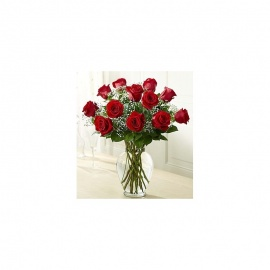 JICO PREMIUM LONG STEM RED ROSES