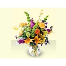 Cosmopotian flowers